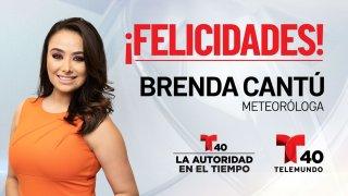Brenda Cantu