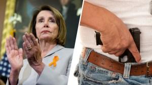 Cámara Baja presenta proyecto para el control de armas