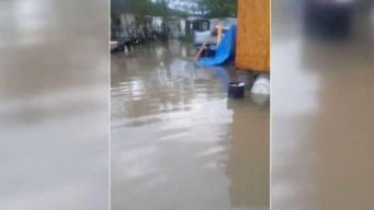 Evalúan estragos de las inundaciones en condado Willacy