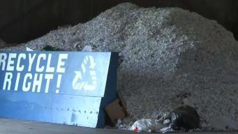 Importancia y beneficios del reciclaje