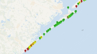 Alta presencia de materia fecal en algunas playas del Golfo