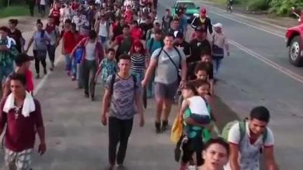 [TLMD - McAllen] Abogado explica la nueva cláusula de la política de asilo