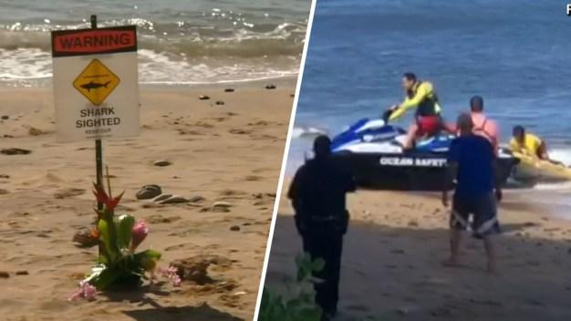 Vacaciones de pesadilla tras ataque mortal de tiburón