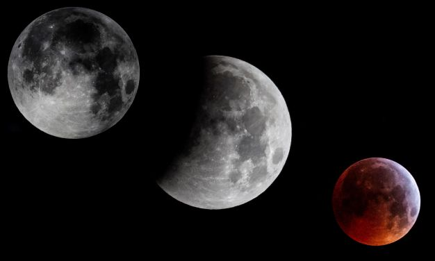 """¿Te la perdiste? Así se vio la superluna """"sangre de lobo"""""""