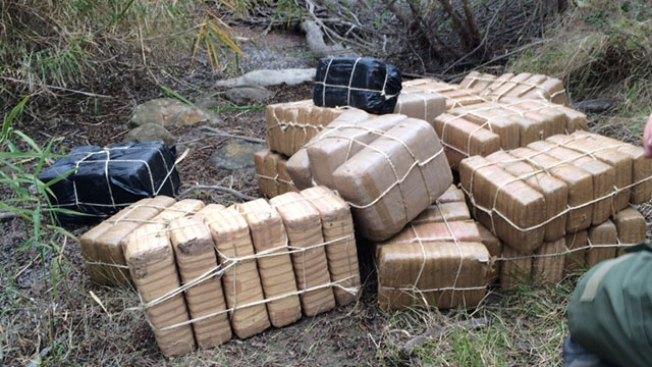 Confiscan más de $1.5 millones en marihuana