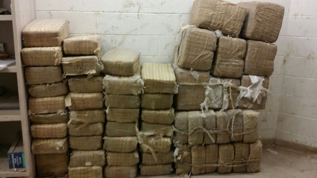 Confiscan $3.2 millones en marihuana