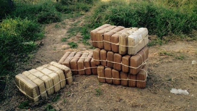 Confiscan más de $1 millón en marihuana