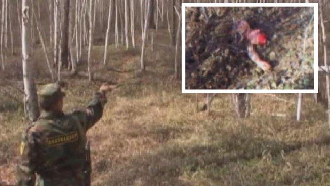 Video: rescatan a mujer enterrada viva por un oso