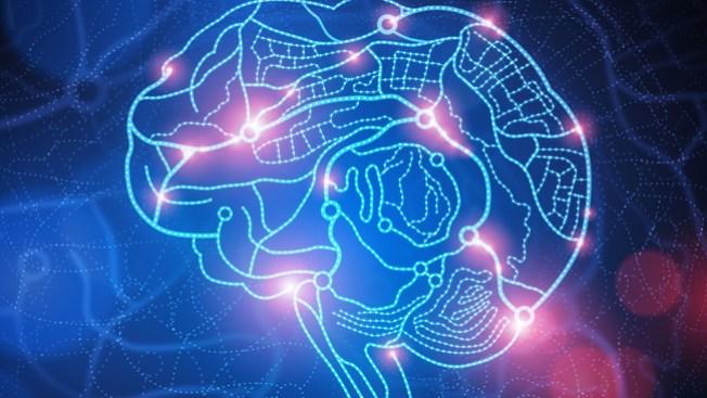 A más insomnio, menos cerebro