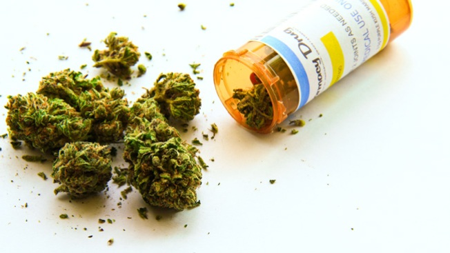 Despido laboral por marihuana a corte