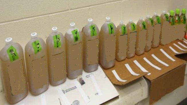 Confiscan más de $3 millones en metanfetaminas