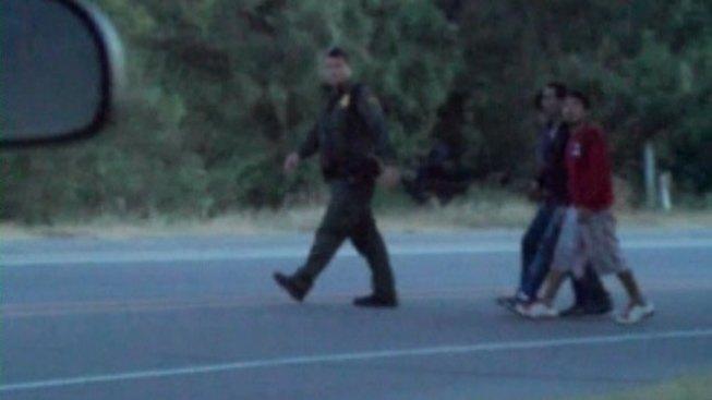 Arrestan a varios inmigrantes en Palmview