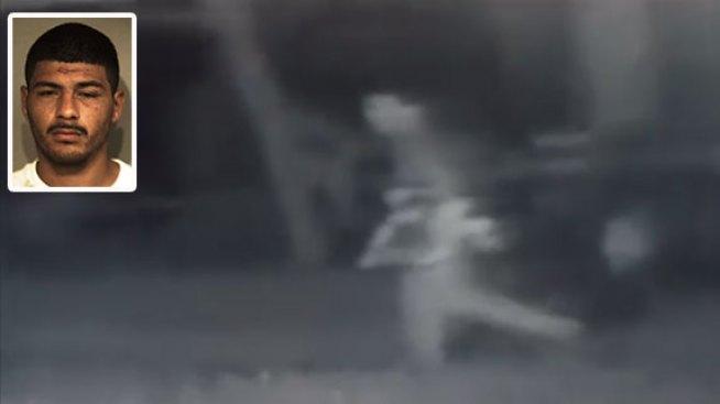 Hombre es acusado de intentar robar ovejas