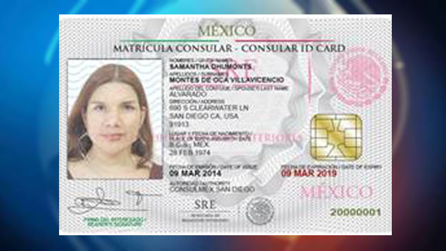 Mexico id card related keywords mexico id card long tail for Who is a consular